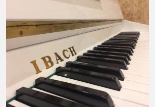 Ibach 101