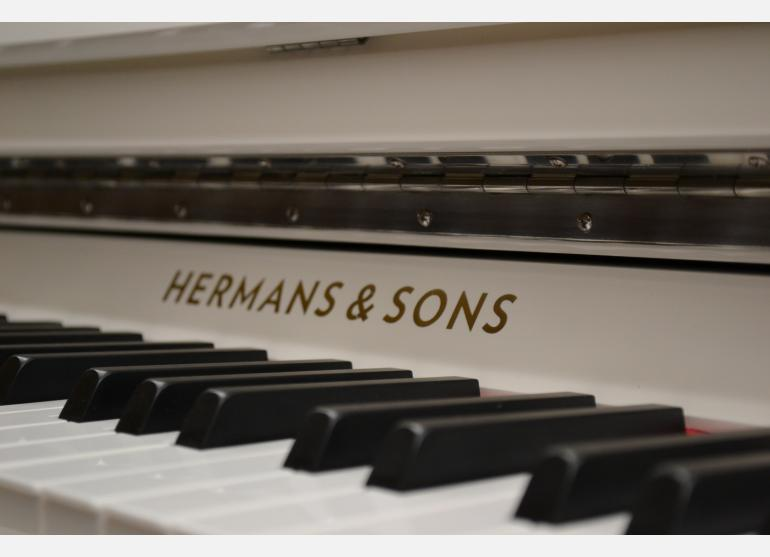 Hermans & Sons Academy 121 - Blanc
