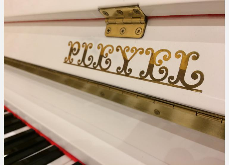 Pleyel (Schimmel)